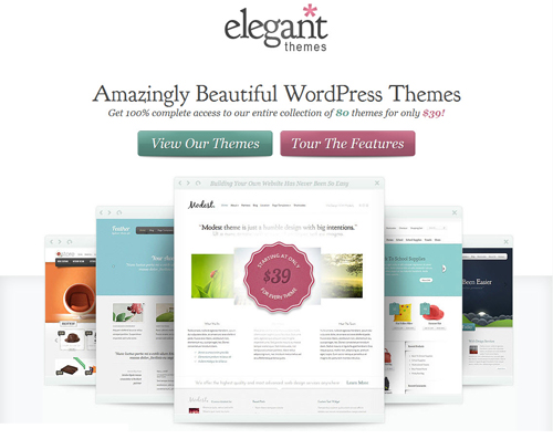 Premium WordPress Themes Providers - ElegantThemes Review