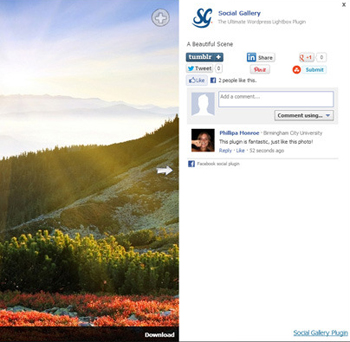 Social Gallery Photo Viewer