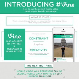 How Online and Offline Marketers are Growing on Vine